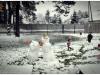 snieg_5586
